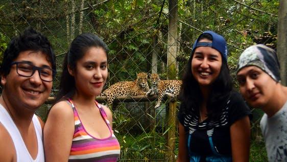 Wildlife Rescue Center and Jaguar Conservation