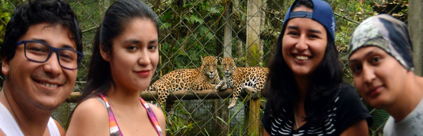 Wildlife Rescue Center and Jaguar Conservation