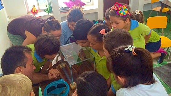 English Teacher for Local Children