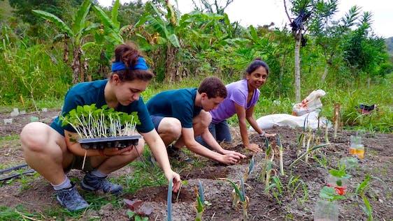 Organic Farm & Sustainable Tourism