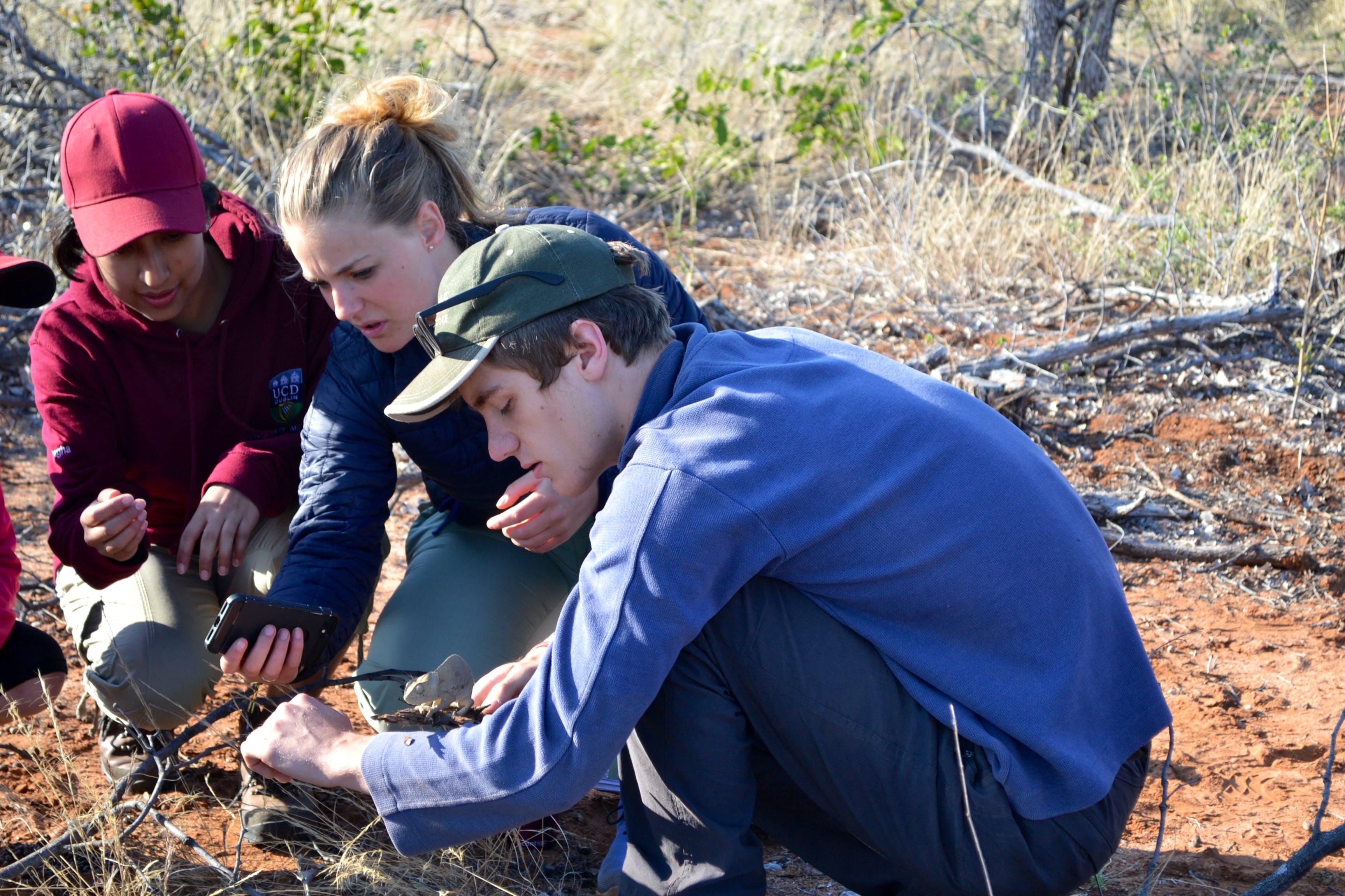 Bush Survival & Safari Project