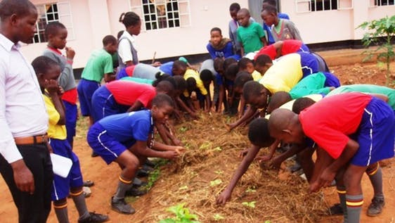 Training School and Community Organic Gardening