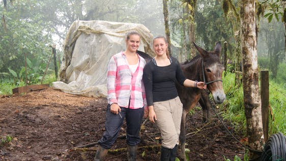 Conservation and Eco Tourism Assistant