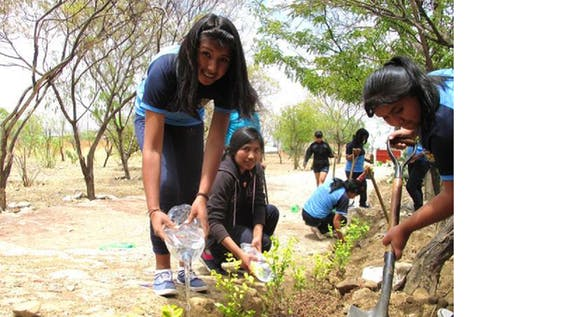 Environmental Education for school children