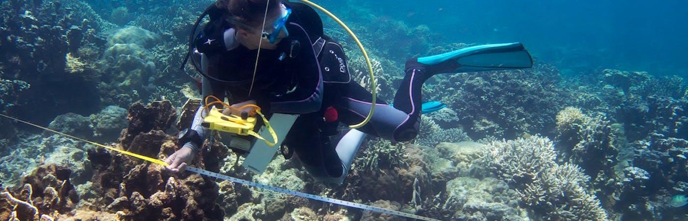 Marine Resources Researcher