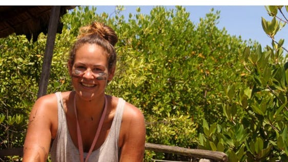 Mangrove Environmental Conservation