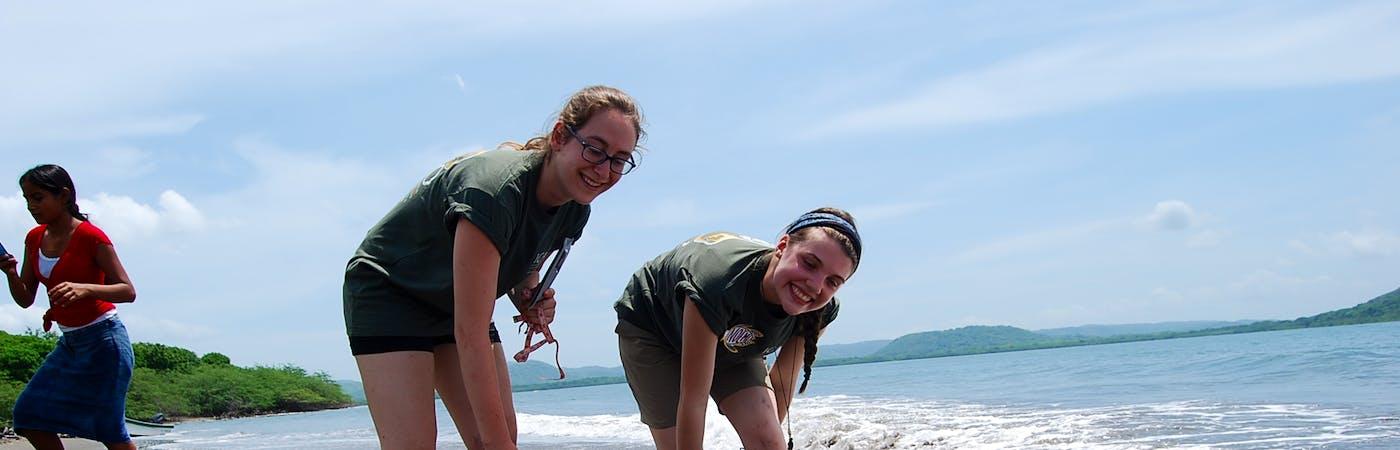 Sea Turtle Conservation Assistance