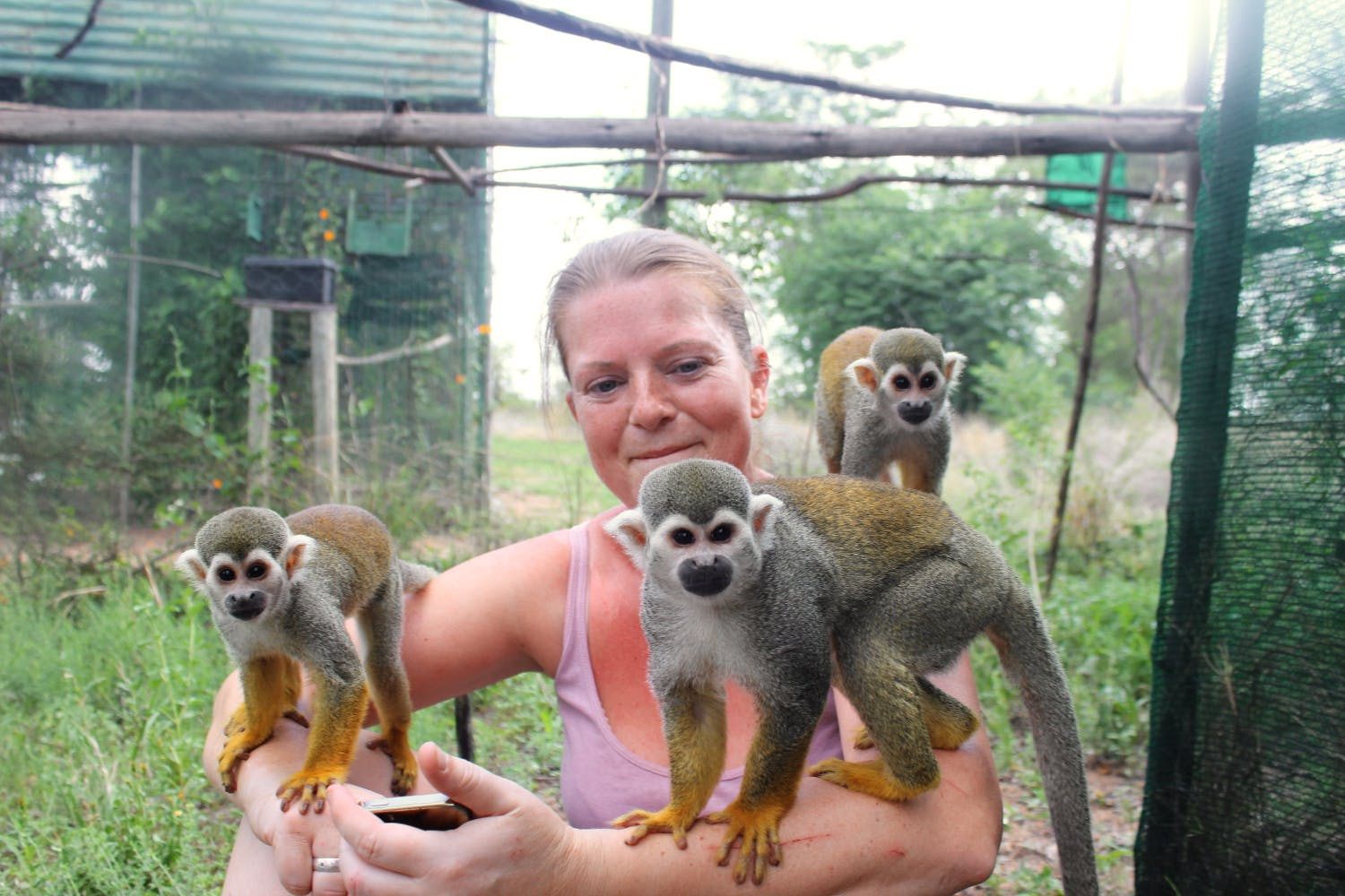 Primate Sanctuary and Monkey Rescue Assistant
