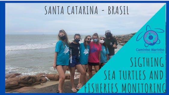 Sea Turtles and Artisanal Fisheries Monitoring