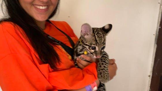 Local Animal Rescue Center