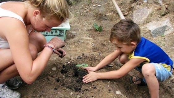 Educate about Urban Gardening