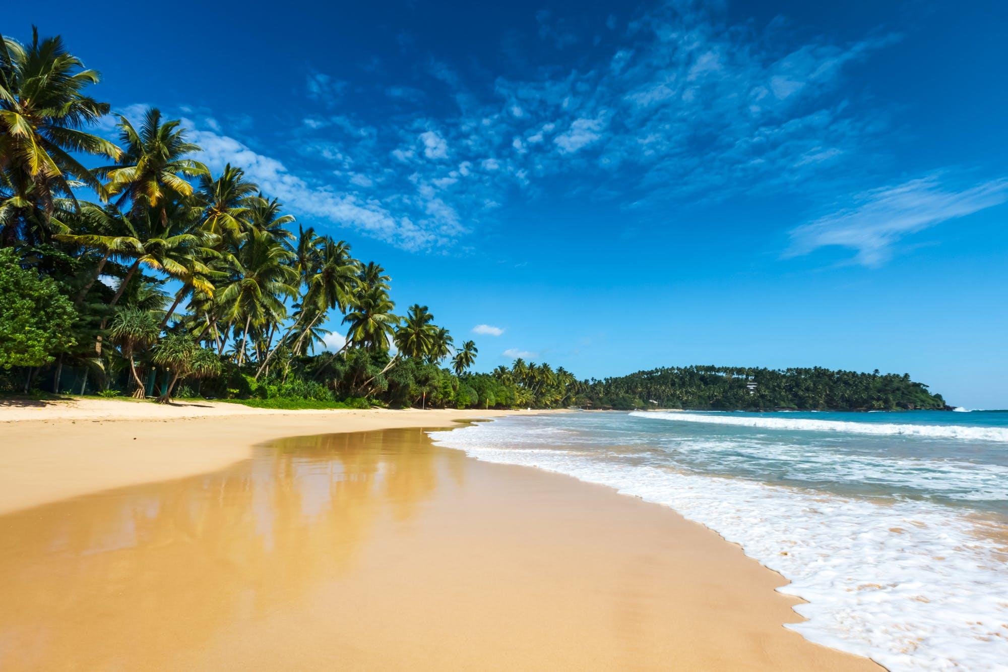 Real Sri Lanka Experience