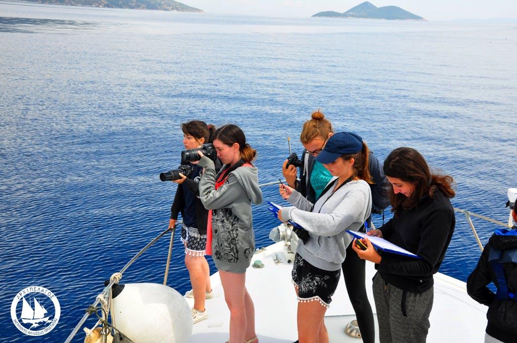 Nature Film Making Internship