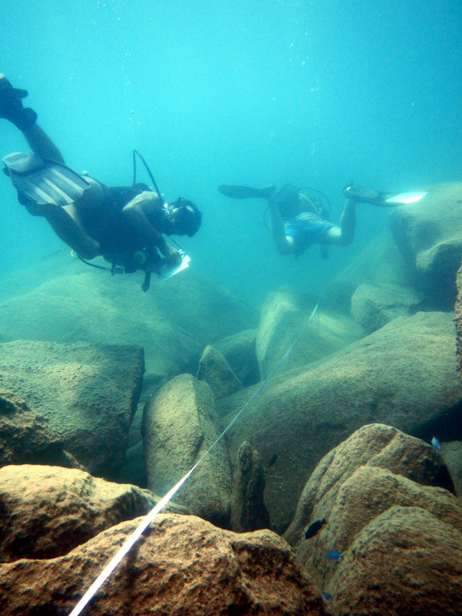 Lake Malawi Research Diver Internship