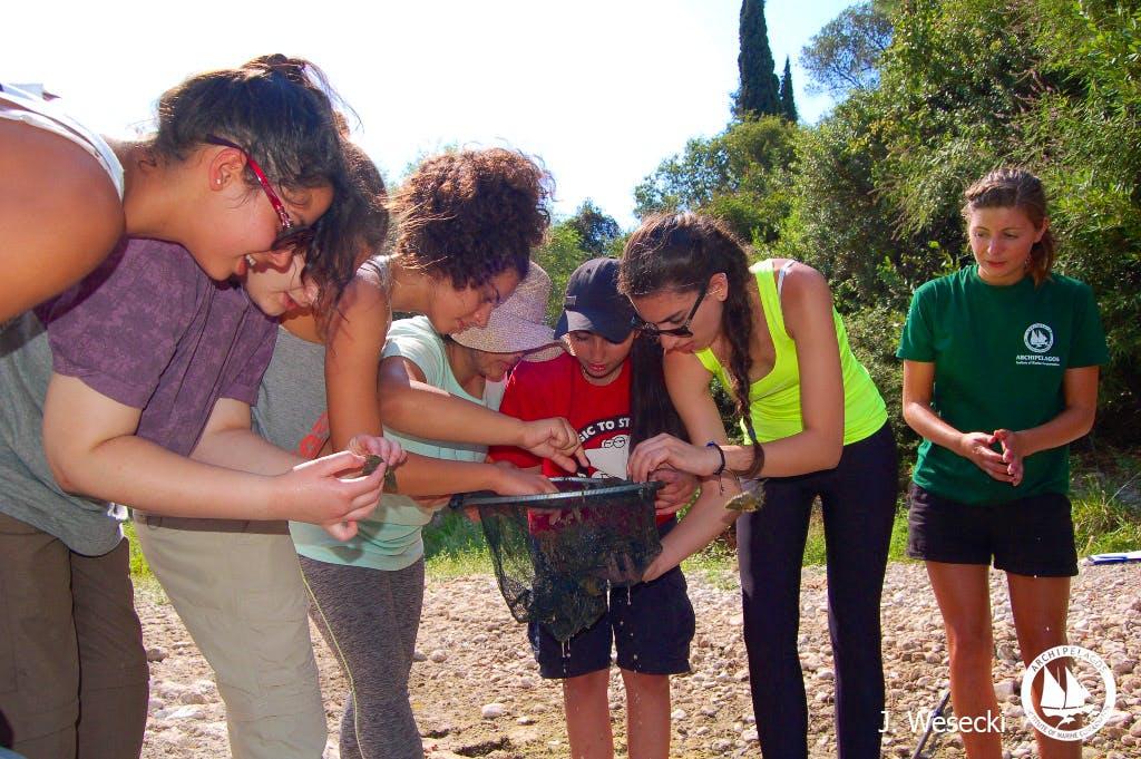 Environmental Education Internship
