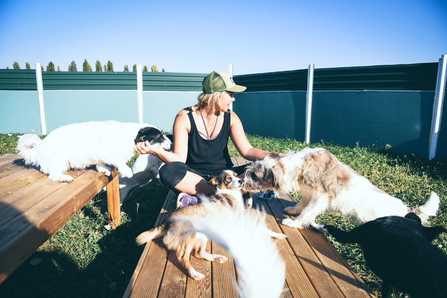 Caring with passion for dogs and animals