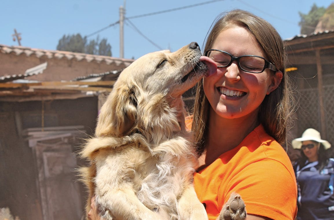 Support Animal and Wildlife Rescue Centers