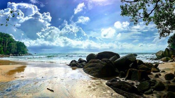 Coastal Conservation Internship