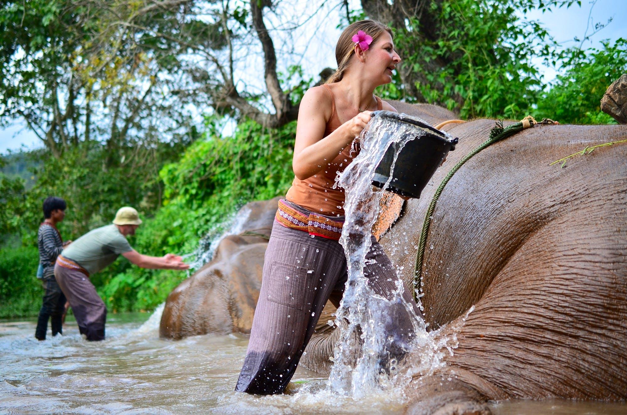 Elephant Sanctuary & Environmental Protection