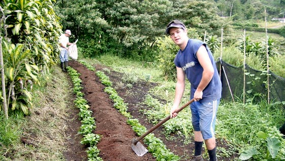 Agroecological Farming