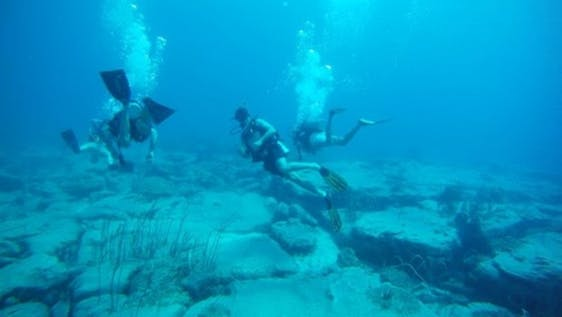 Diving and Marine Conservation Cambodia