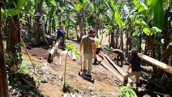 Organic Farming and Building on Eco Lodge