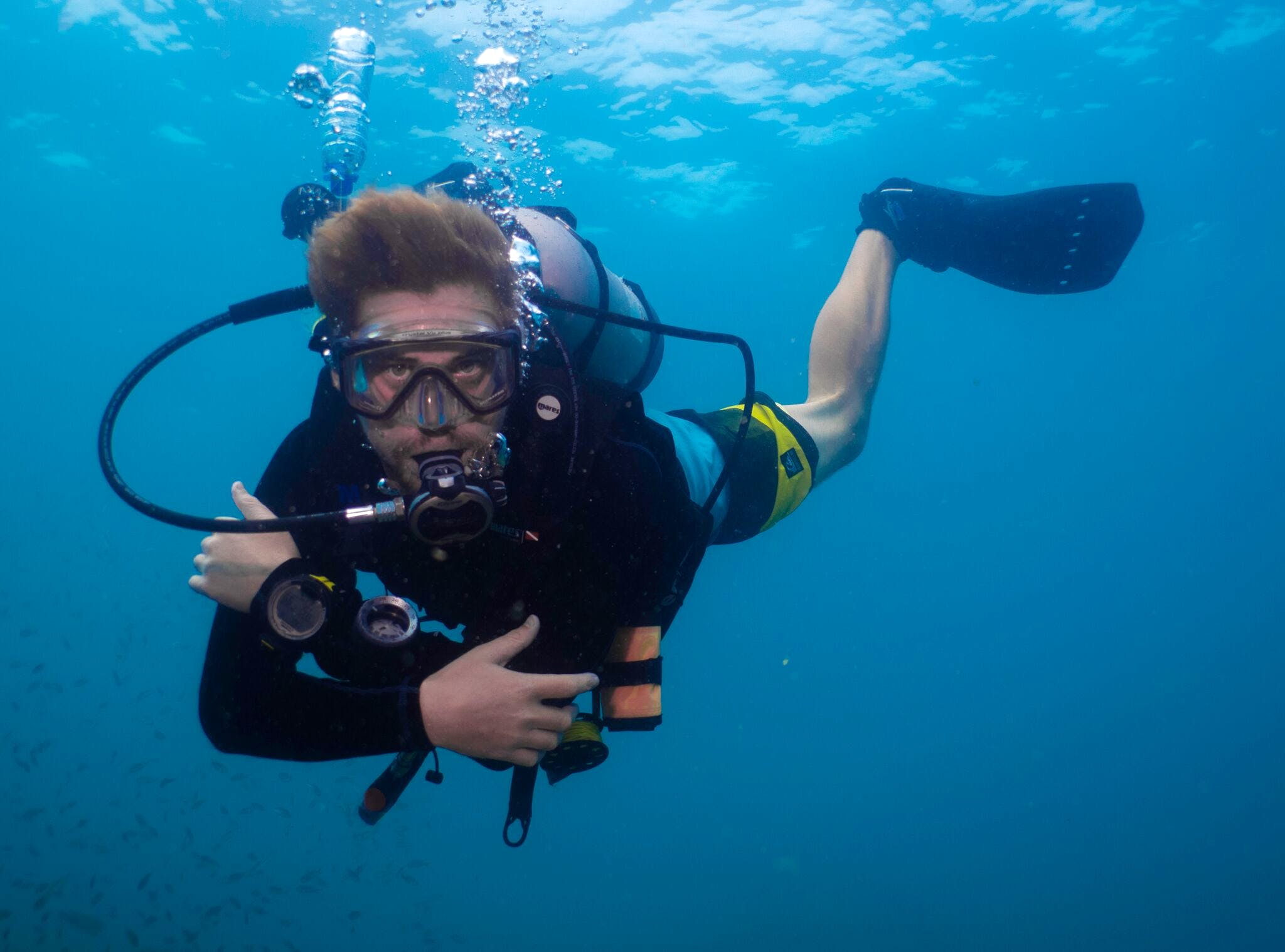 Turtle & Marine Conservation Divemaster Internship