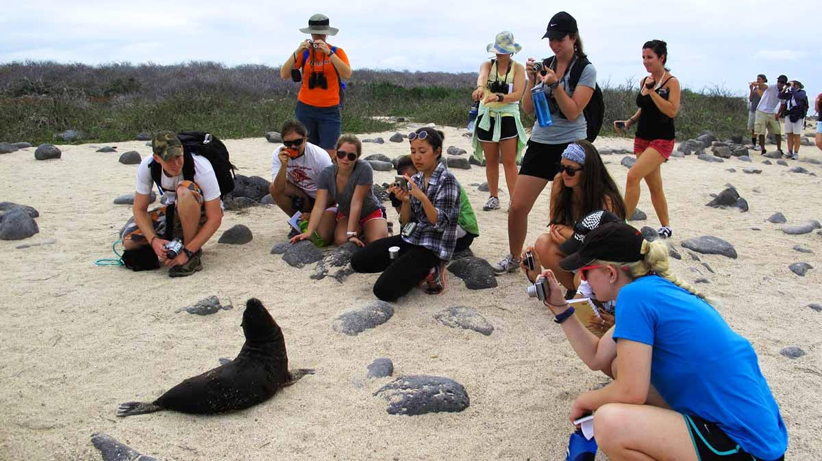 Ecotourism Intern (Galapagos National Park)
