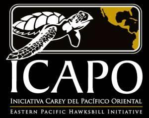 ICAPO