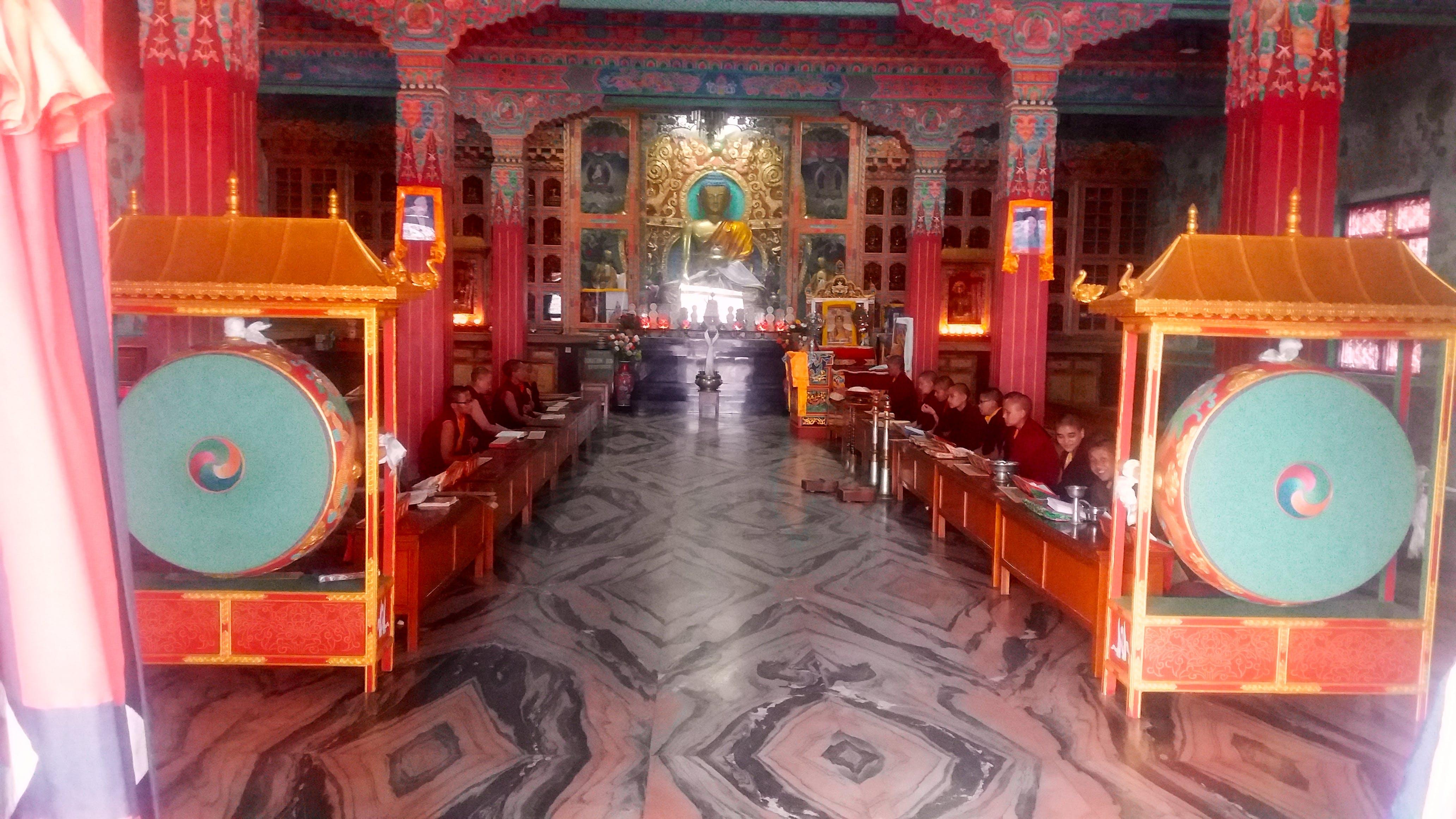 English Teacher for Buddhist Monks