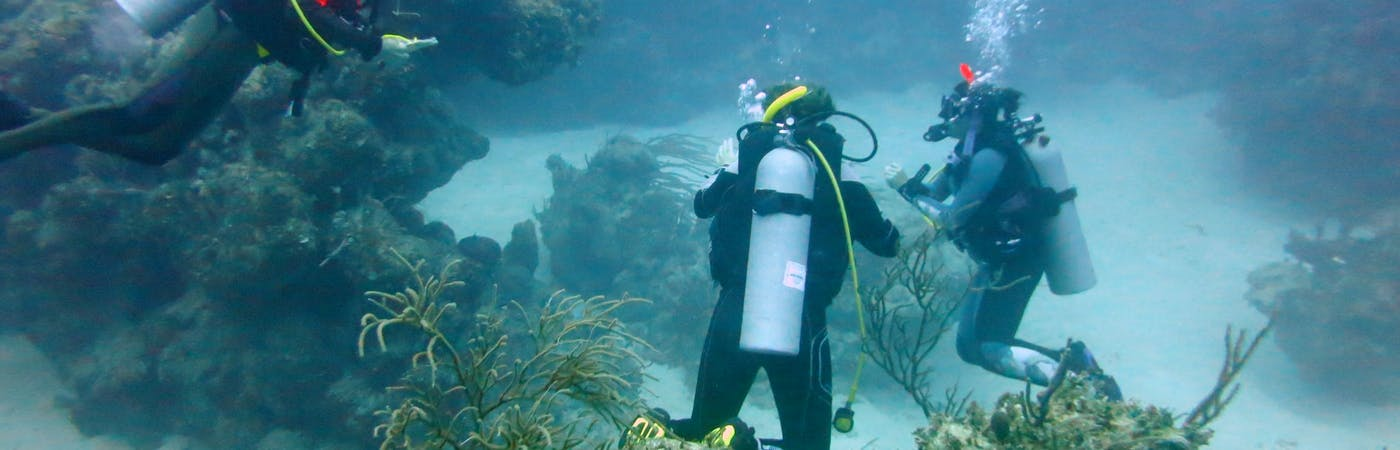 Marine Protection and Conservation