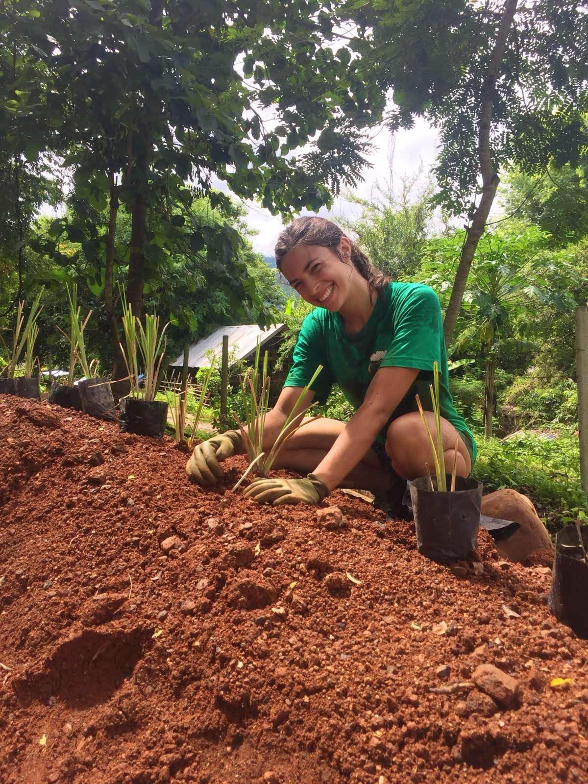 Sustainable Agriculture & Community Development
