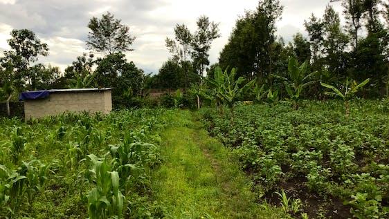 Build a nursery school in a local Maasai community
