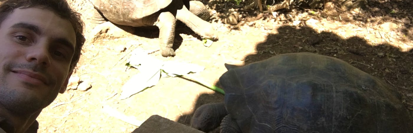 Environmental and Turtle Conservation