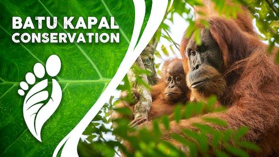 Assistant Conservation Program Coordinator