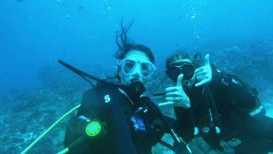 Marine Adventure & Diving