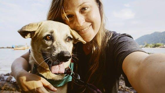 Thai Island Dog & Cat Shelter