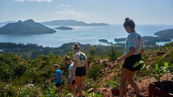 Tropical Island & Coastal Environment Restoration