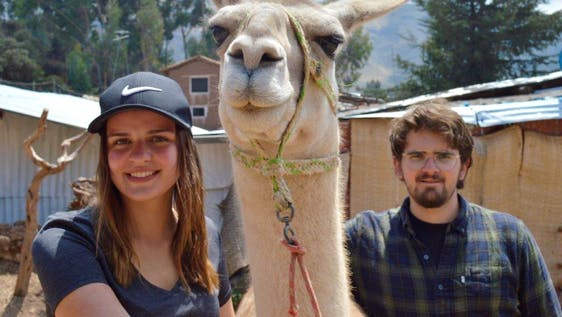 Alpaca and Llama Farm