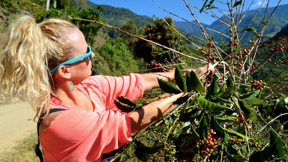 Support a local Organic Coffee Farm