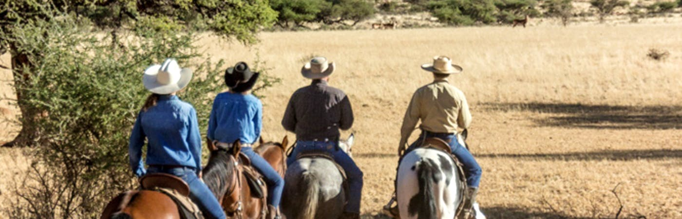 Western horseriding experience